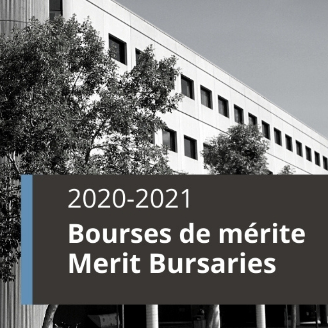 Merit bursary  texte