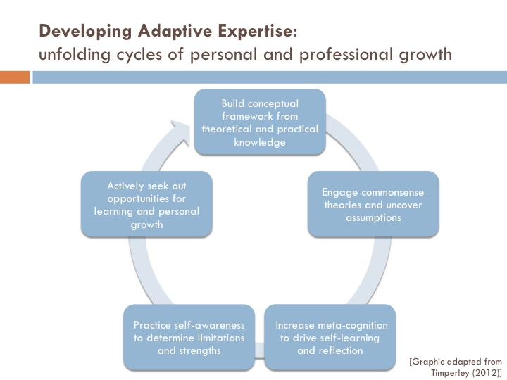 Developing Adaptive Expertise graphic