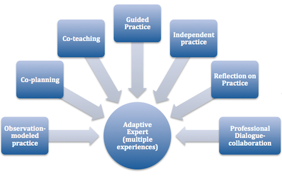 Adaptive Expert - (observation - modeled practice, Co-planning, Co-teaching, Guided Practice, Independent practice, Reflection on Practice, Professional Dialogue Collaboration)